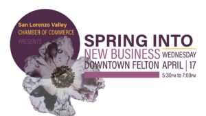 Spring into Business @ San Lorenzo Valley Chamber of Commerce